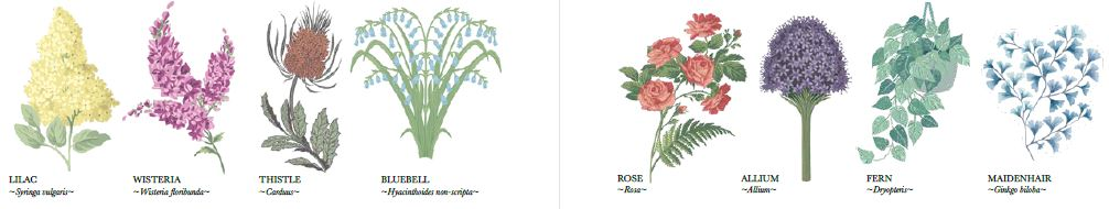 Cole and Son flower inspiration